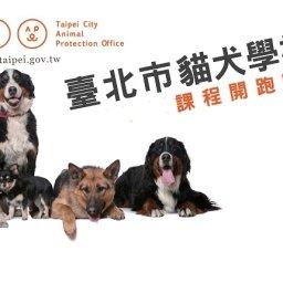 臺北市貓犬學校 講師