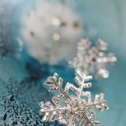 冬 フリー素材 無料ダウンロードアイコンの王国